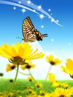 hình ảnh nền Hoa Và Bướm đẹp, dể thương, kute nhất